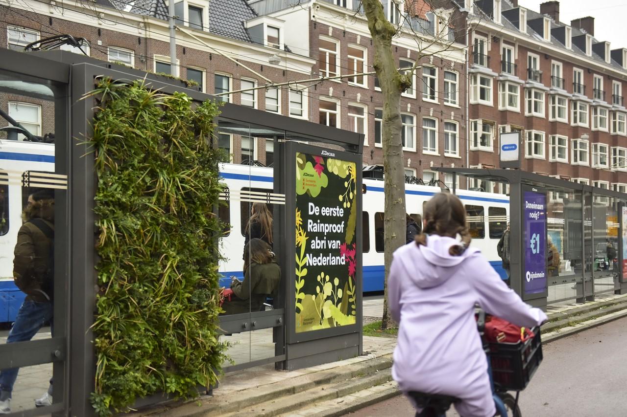 Abri met groendak en groene gevel in Amsterdam
