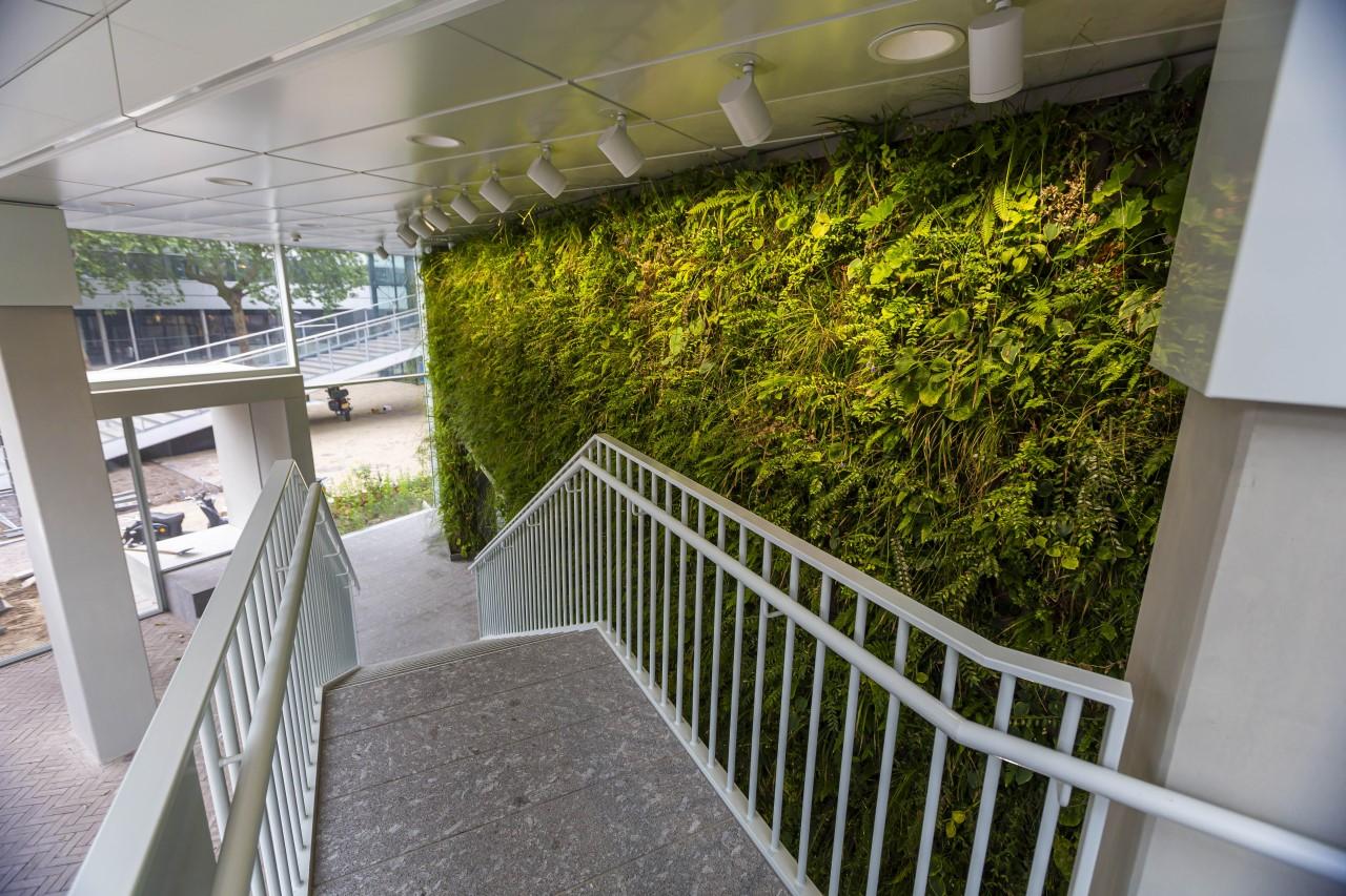 Bovenaanzicht groene gevel Het Platform Utrecht