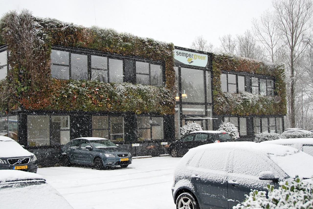 hoofdkantoor Sempergreen in de sneeuw