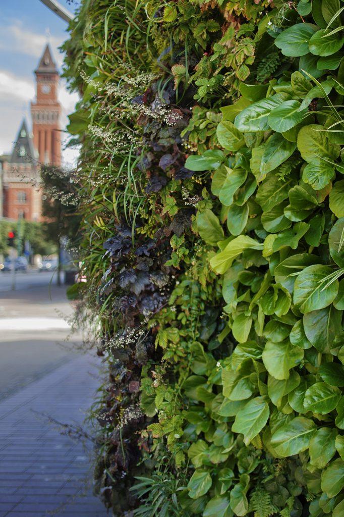 Outdoorbeplanting in Zweden