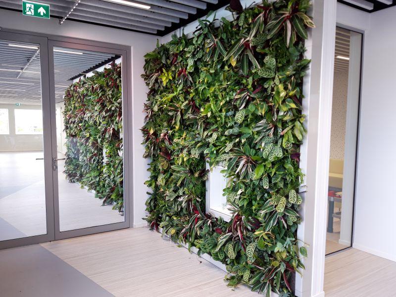 Groene muur in Vrouw en Kind Centrum Drachten