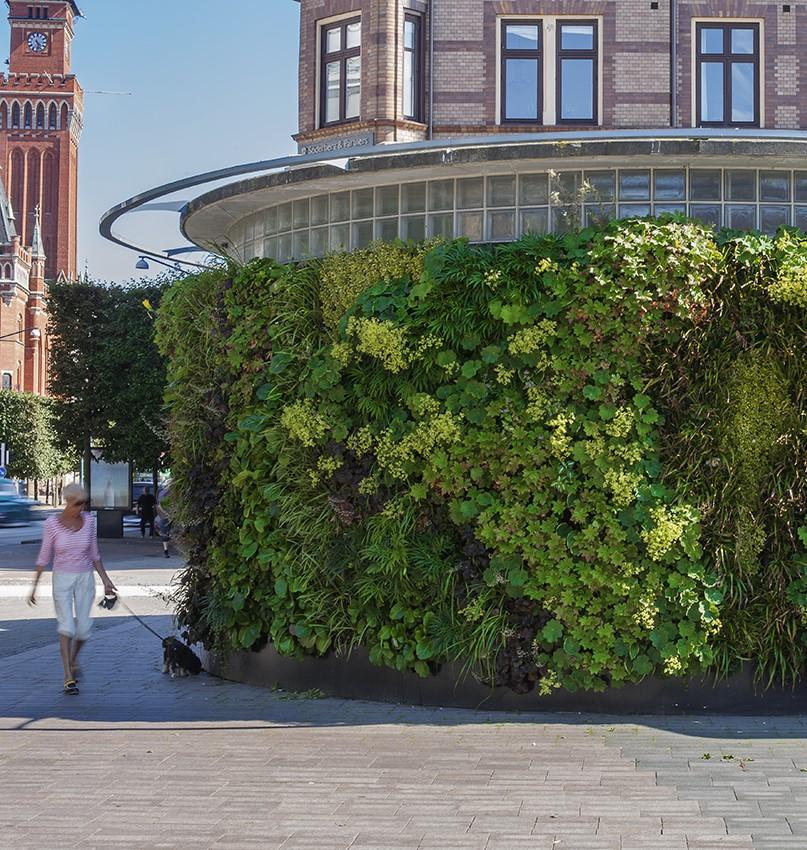 SemperGreenwall op gewelvde muur in Helsingborg Zweden