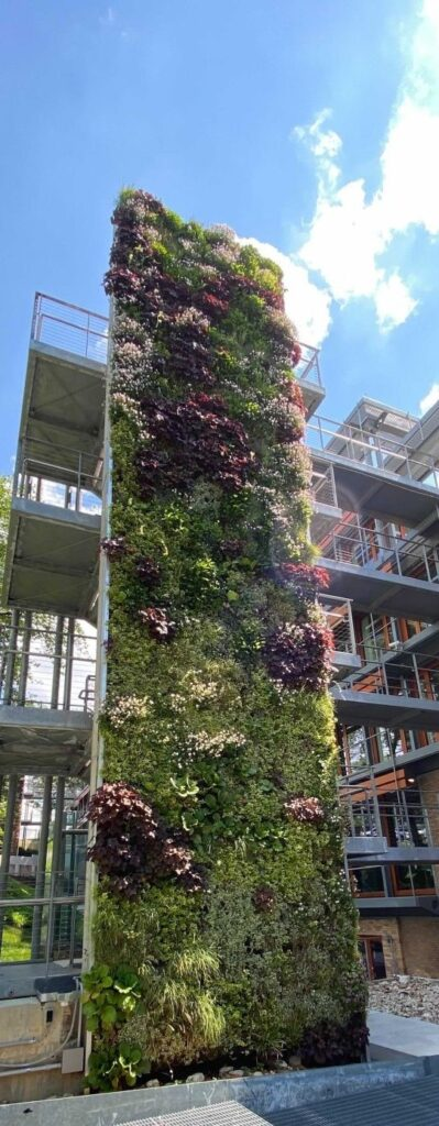 The power of green buildings