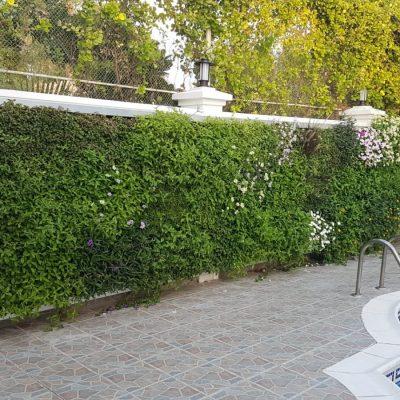 SemperGreenwall_UAE_Dubai_Villa